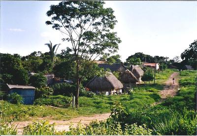 Straße in Ascensión