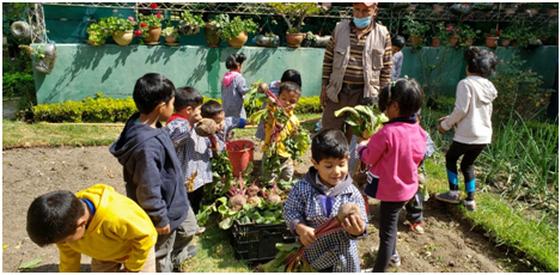 Kinder im heimeigenen Gemüsegarten