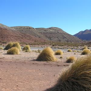 Salar de Uyuni und Umgebung